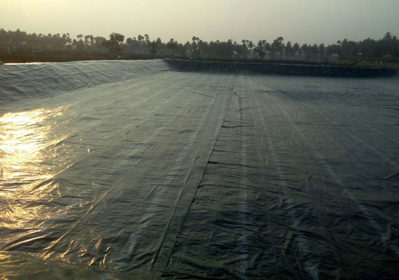 Agriculture Pond Liners - Narmada Polyfab